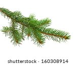 branch of christmas tree on... | Shutterstock . vector #160308914