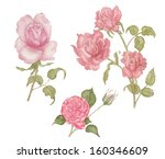 painted watercolor flowers | Shutterstock . vector #160346609