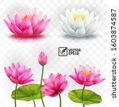 3d realistic vector set of... | Shutterstock .eps vector #1603874587