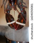 Lobster Above A Boling Lobster...