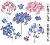 collection of vector geranium... | Shutterstock .eps vector #1604128954