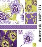 vector peacock feather seamless ...   Shutterstock .eps vector #160544591