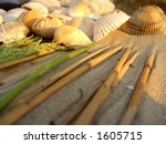 Scene of seashells, green plants,sand and dry-out sticks - stock photo