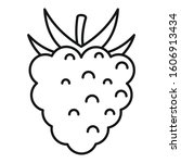 delicious raspberry icon.... | Shutterstock .eps vector #1606913434