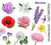 Spring Flowers. Lilac  Jasmine  ...