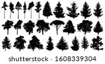 trees set isolated on white... | Shutterstock .eps vector #1608339304