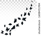 flying butterflies isolated on... | Shutterstock .eps vector #1608451984
