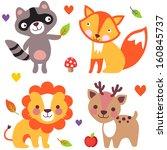set of cute animals  raccoon ... | Shutterstock .eps vector #160845737