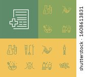anatomy icons set with herbal...