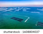 Aerial View Of A Seaweed Farm...