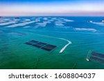 Aerial View Of A Seaweed Farm...
