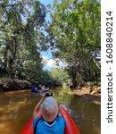 Small photo of Little Amazon Phang Nga (Klong Sang Nae), Phang Nga, Thailand.Ancient banyan forest Thailand