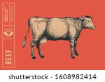 graphic hand drawn cow on a red ...   Shutterstock .eps vector #1608982414