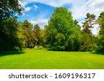beautiful summer garden with... | Shutterstock . vector #1609196317