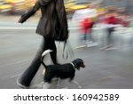 Stock photo walking the dog on the street in motion blur 160942589