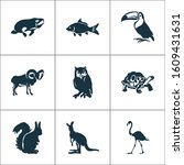 fauna icons set with flamingo ... | Shutterstock . vector #1609431631