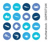 fauna icon set and fin with... | Shutterstock .eps vector #1609537144