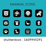mammal icon set. 12 filled... | Shutterstock .eps vector #1609945291
