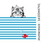 Funny Cat Kitten In Newspaper...