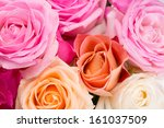 Stock photo assorted roses of pink yellow orange and creamy colors 161037509