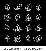 leaves and branches linear set... | Shutterstock .eps vector #1610392294