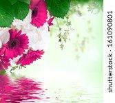 multi colored gerbera daisies... | Shutterstock . vector #161090801