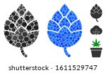 hop bud composition of round... | Shutterstock .eps vector #1611529747