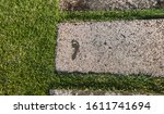 Wet Footprint Of A Human Foot...