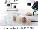 microbiological testing for... | Shutterstock . vector #161181605