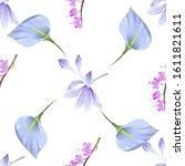 Violet Agapanthus Lily. Purple...
