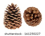 Two Pine Cones Isolated On...