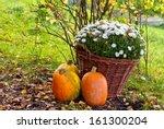 Colorful Garden Decoration