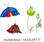 freehand illustration of a set... | Shutterstock . vector #1613119777