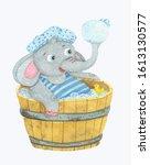 Little Funny Elephant Taking...