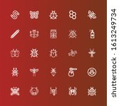 editable 25 insect icons for... | Shutterstock .eps vector #1613249734