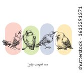 birds set. hand drawn funny... | Shutterstock .eps vector #1613291371
