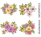 flowers set. collection of... | Shutterstock .eps vector #1613545111