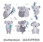 cute koala bears vector... | Shutterstock .eps vector #1614199504