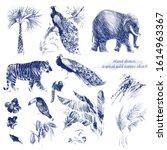 Vintage Sketch Tropical Animals ...