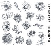 collection of hand drawn... | Shutterstock .eps vector #1615306264