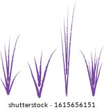 Clumps of grass. Drawn with a brush. White background.Vector illustration for your business. Cartoon style.