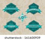 vintage labels set | Shutterstock .eps vector #161600939