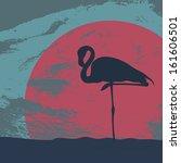 Beautiful Flamingo Standing On...