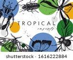 vector frame design with high... | Shutterstock .eps vector #1616222884