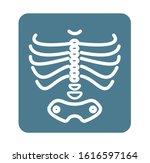 x ray ribcage with pelvic bone  ... | Shutterstock .eps vector #1616597164