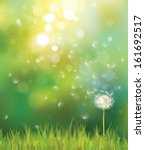 vector of spring background... | Shutterstock .eps vector #161692517