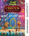 Circus Entertainment Show...
