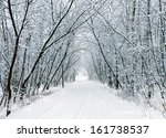 Snow Forest Alley