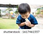 Cute Little Asian Child ...