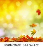 autumn leaves  | Shutterstock . vector #161763179